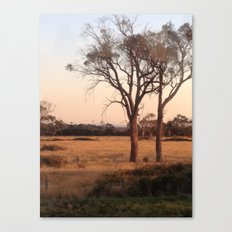Countryside - Color Canvas Print