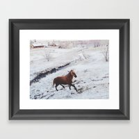 Winter Hill Horse Framed Art Print