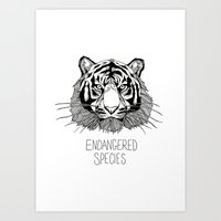 Endangered Species Tiger Art Print
