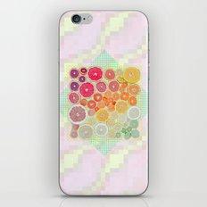 1493 iPhone & iPod Skin