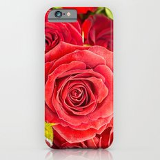 Stunning red roses iPhone 6s Slim Case