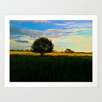 Open Field Art Print