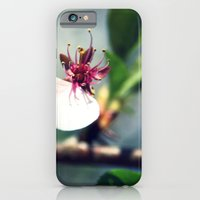 iPhone & iPod Case featuring He Loves Me by Gallo Girl Photography