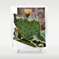 Sonoran Love / Arizona Shower Curtain