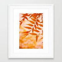 Framed Art Print featuring Sun Kissed by Shawn King