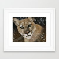 Framed Art Print featuring Mountain Lion by R. Delage