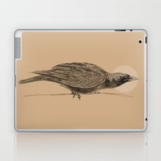 Ready to Fly Laptop & iPad Skin