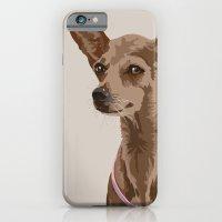 Macy the Chihuahua Dog iPhone 6 Slim Case