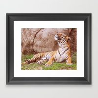 Malayan Tiger I Framed Art Print