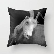 black goat Throw Pillow