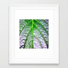 leaf nature Framed Art Print
