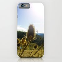 Colorful Winter Day iPhone 6 Slim Case