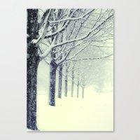 Winter's Walk Canvas Print