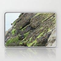 Seaweed Laptop & iPad Skin