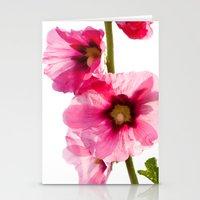 Alcea Rosea 4177 Stationery Cards