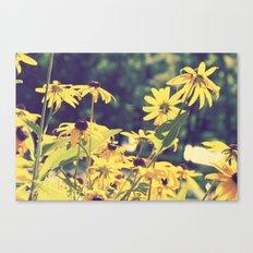 Summer Days Canvas Print