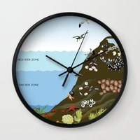 Southern California Tide Pool Explorer's Guide Wall Clock
