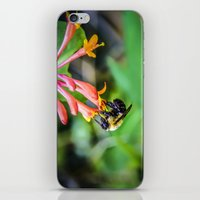 How sweet it is iPhone & iPod Skin