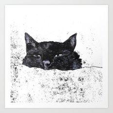zzz cat Art Print
