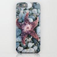 Sea Star iPhone 6 Slim Case