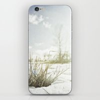 { GRASSY PERSPECTIVE } iPhone & iPod Skin