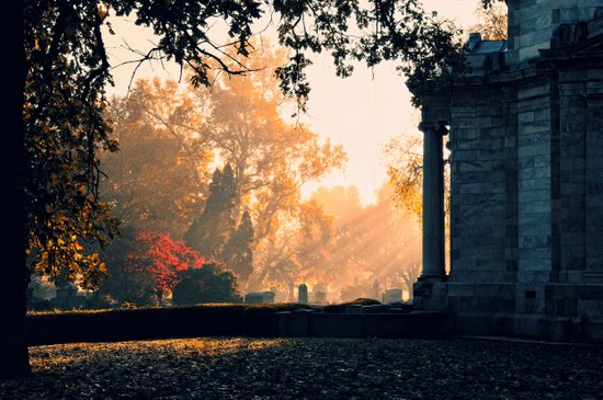Fall morning at Green Lawn Art Print