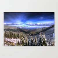 Winter Vision Canvas Print