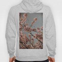 Cheery Cherry Blossoms Hoody
