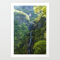 Rabacal Levada Art Print