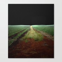 On A Road To Nowhere Canvas Print