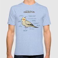 Anatomy of a Cockatiel Mens Fitted Tee Tri-Blue SMALL