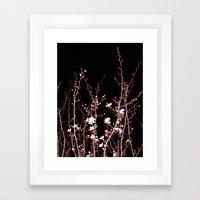 Winter night flowers Framed Art Print