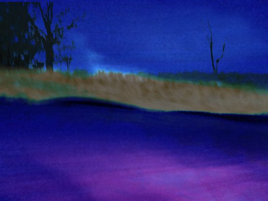 Nightime grasses ~ Abstract Art Print