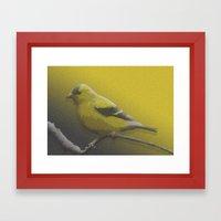 little bird Framed Art Print