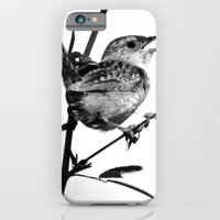 iPhone & iPod Case featuring Sedge Wren by Ornithology