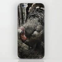 Tom Feiler Turkey iPhone & iPod Skin