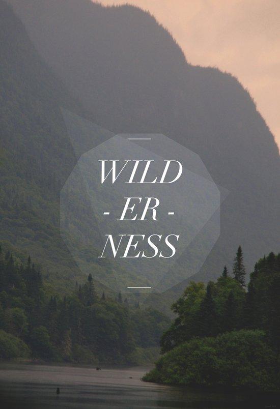 WILDERNESS — Art Print