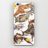 Animal Menagerie iPhone & iPod Skin
