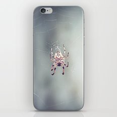 Spider Song iPhone & iPod Skin