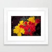 French Marigolds & Verbena Framed Art Print