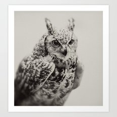 Owl | Fig. 03 Art Print