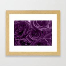 Bed of Roses - Purple Framed Art Print