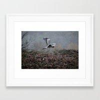 Blue Heron in the Rain  Framed Art Print