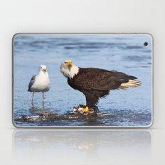 Please share Laptop & iPad Skin