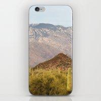 Saguaro National Park iPhone & iPod Skin