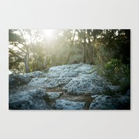 360 Overlook Canvas Print