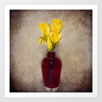 Daffodil Still Art Print