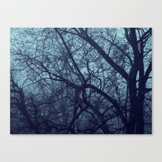 Bleakness  Canvas Print
