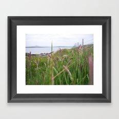 Irish Sea Grass  Framed Art Print