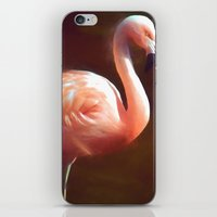 Flamingo dream iPhone & iPod Skin